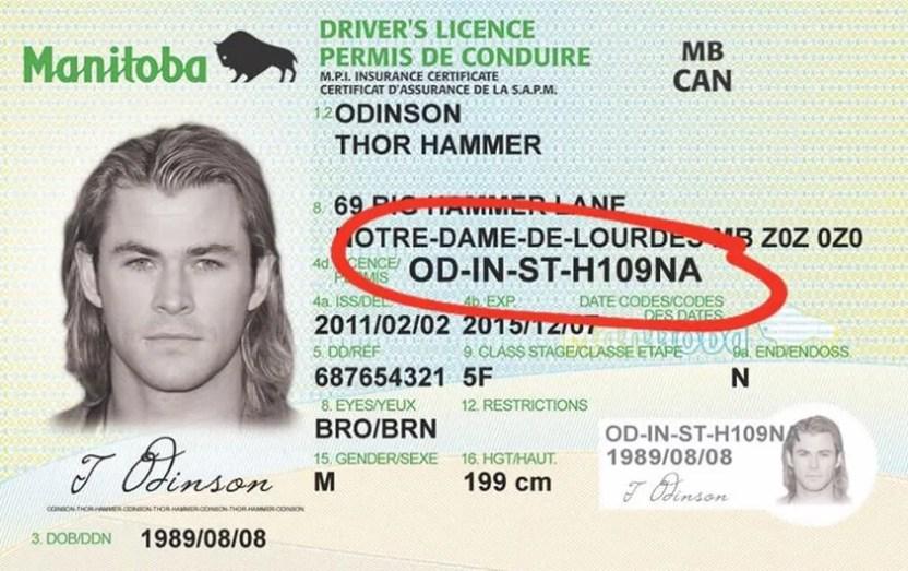 Манитобские водительские права