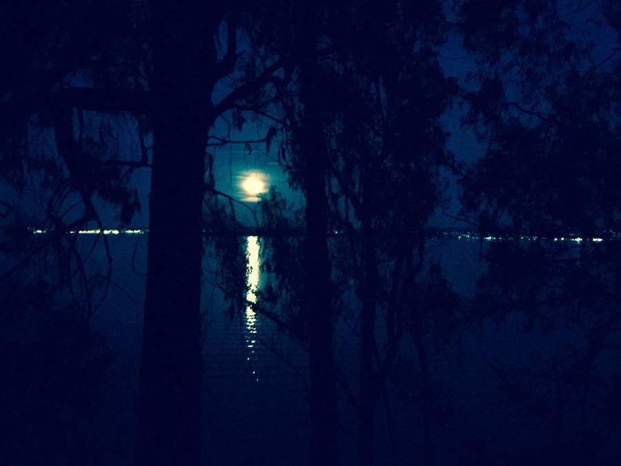 Supermoon - moon-over-bay