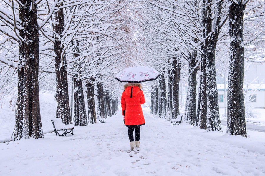 Seasonal Affective Disorder - SAD - women-with-red-jacket-walking-with-umbrella-in-snow