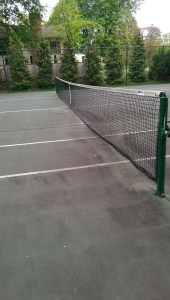 Green Giant Privacy Screening of Tennis Courts for HOA