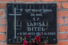 gdansk-111 (Kopiowanie)