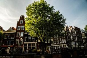 amsterdam-35 (Kopiowanie)