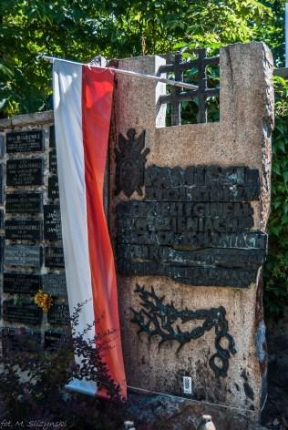 cmentarz stary-10 (Kopiowanie)