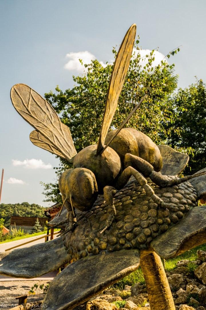 pszczoły bałtów