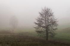 Główny Szlak Świętokrzyski - i znowu mgła na szlaku