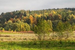 Główny Szlak Świętokrzyski - piękne krajobrazy