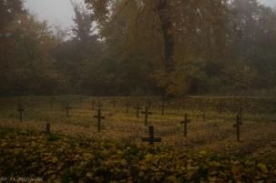 Główny Szlak Świętokrzyski - cmentarz w Gołoszycach