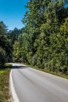 Główny Szlak Świętokrzyski - okolice Ameliówki