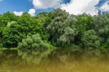 tereny zielone parkowe i woda