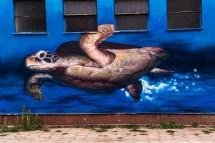 mural żółw