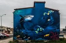 mural z rekinem