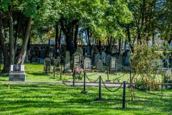 cmentarz żydowski tarnów