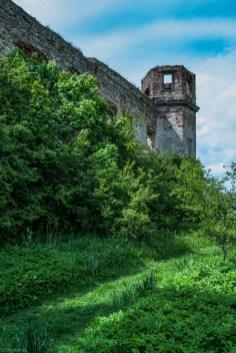 zieleń zarastająca pałac