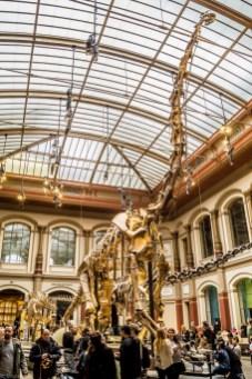 Muzea - Centrum Berlina