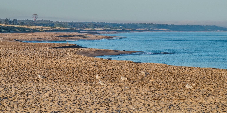 pusta plaża o świcie w darłówku