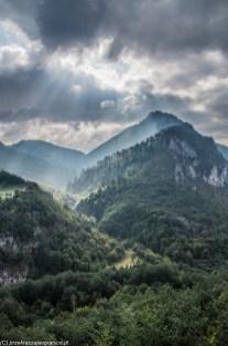Kanion rzeki Tary góry czarnogóra