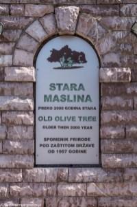 Mitrovica tablica informacyjna czarnogóra