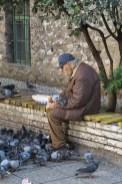 człowiek karmiący gołębie sarajewo