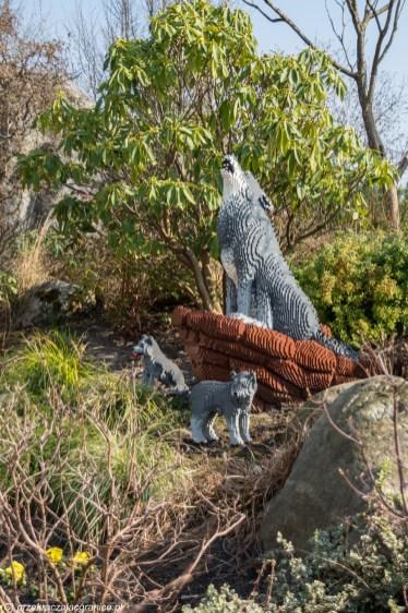 wilki z klocków lego w legolandzie