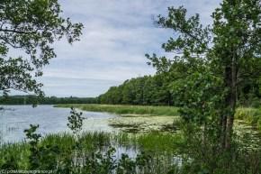 wigry jezioro natura