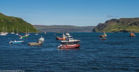 kutry i łodzie stojące w zatoce