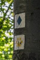 Brama Bieszczad - szlaki