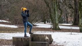 Ogród Botaniczny - Oslo za darmo