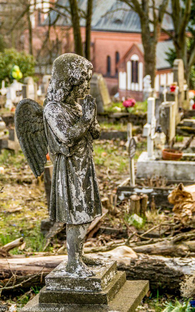 Cmentarz Świętokrzyski