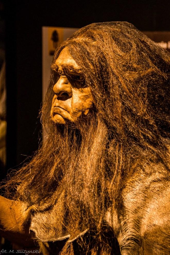 brodaty człowiek prehistoryczny okolice kielc