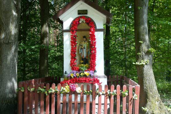 Kapliczka na obrzeżach Niska