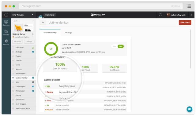 ManageWP Worker Screenshot