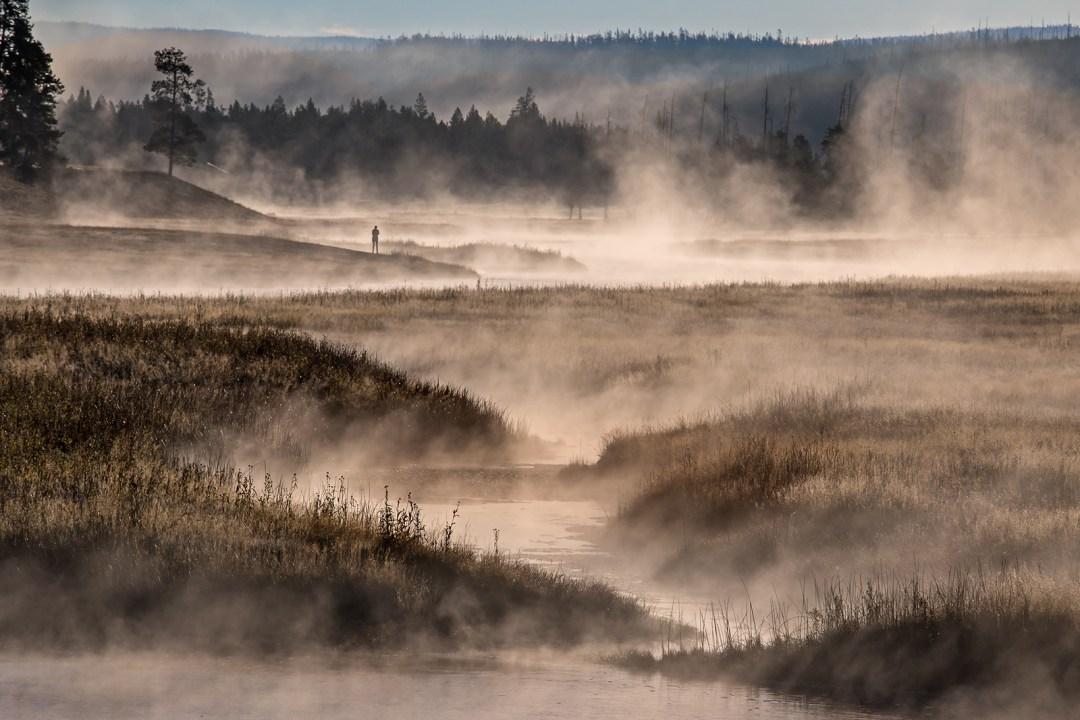 Madison River Mists