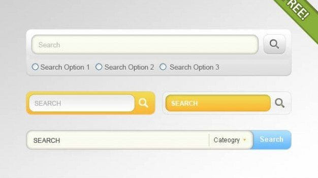 search box   psd layered material