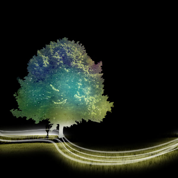 tree19 Create a Magical Image using Photo Manipulation