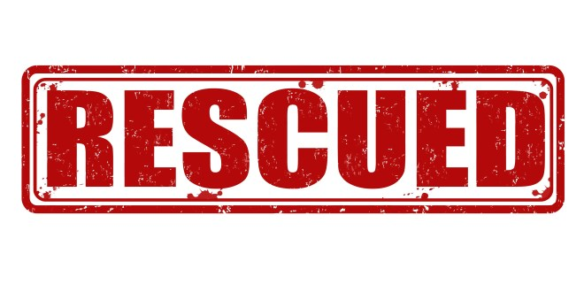 Rescued – Alzheimer's Person Drone Flight Debrief