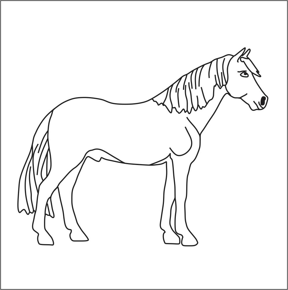imagens de cavalos para colorir