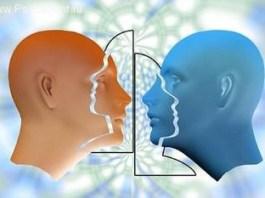 Тренировка объектно-центрированного восприятия.
