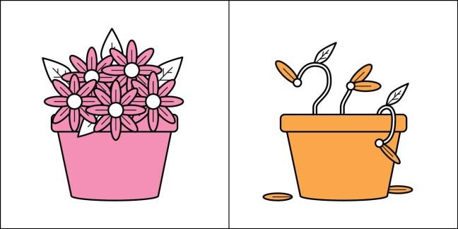 Pessoas do tipo 1: Flores. Gosto de cuidar delas. Me acalma. São lindas. Pessoas do tipo 2: Meu último cacto morreu de sede. :'-(