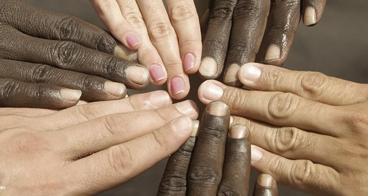alteridade, diferenças, similaridades, raça, igualdade, unidade