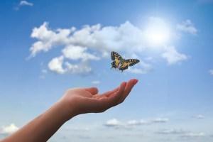 Una mano se abre y libera a una mariposa que vuela hacia el cielo