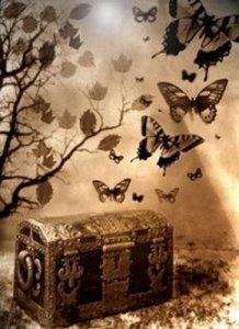 baul-y-mariposas11