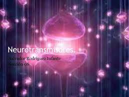 neurotransmisores 7