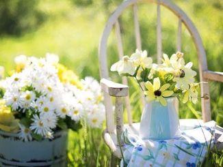 Coaching para Iniciar la Primavera con la Autoestima Alta