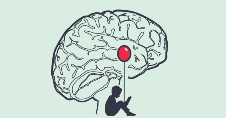Resultado de imagen de amigdala
