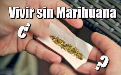 Cómo dejar de fumar porros | 72 Beneficios de dejar la Marihuana