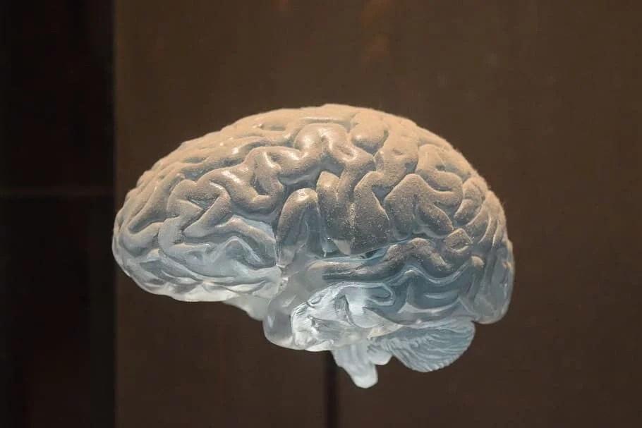 Método fenomenológico descriptivo en psicología
