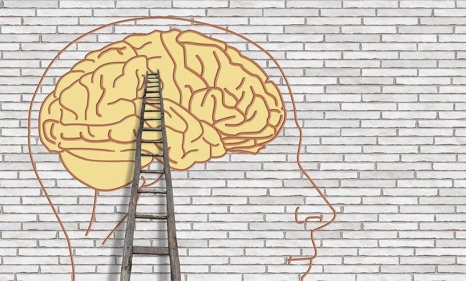 Lista de disciplinas psicológicas