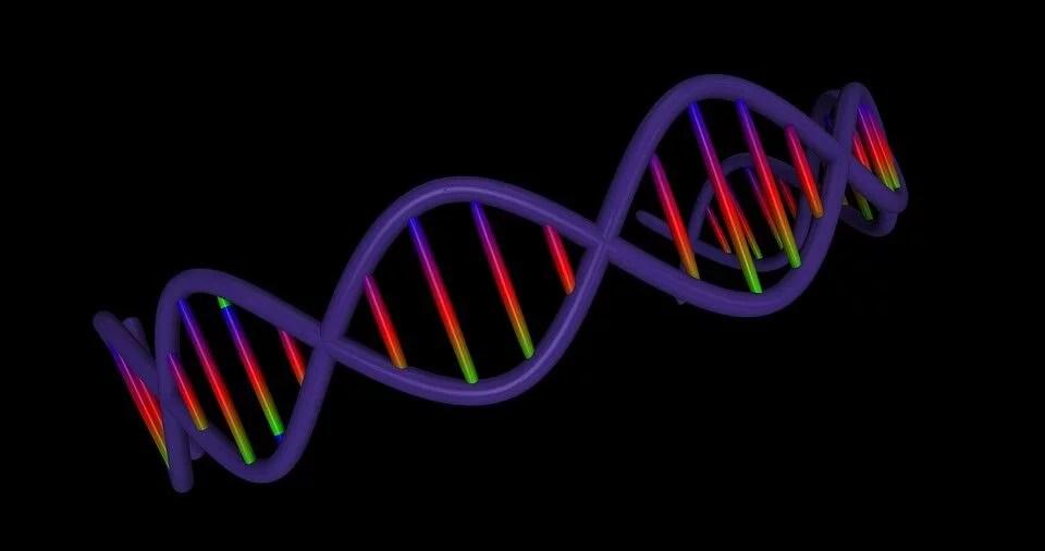 Genómica Psicosocial