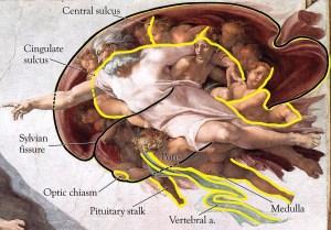 miguel-angel-cerebro
