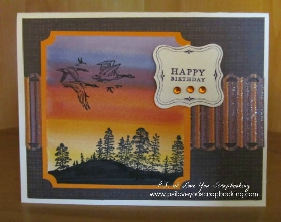 Learn to make a Sunset Background using Copic Markers. It's very easy and each one is unique. They make great backgrounds for geese and wildlife handmade cards.